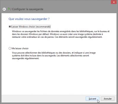 que-voulez-vous-sauvegarder-windows-sauvegarde-fichiers